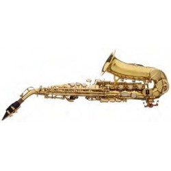 Saxo soprano curvado