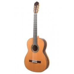 Guitarra Raimundo 131
