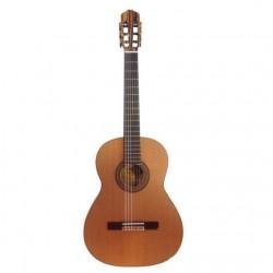 Guitarra Raimundo 133