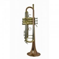 Trompeta Zeus TR500GL