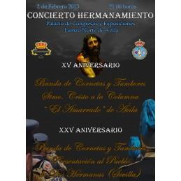 DVD Concierto Hermanamiento...