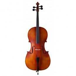 Violoncello Amadeus